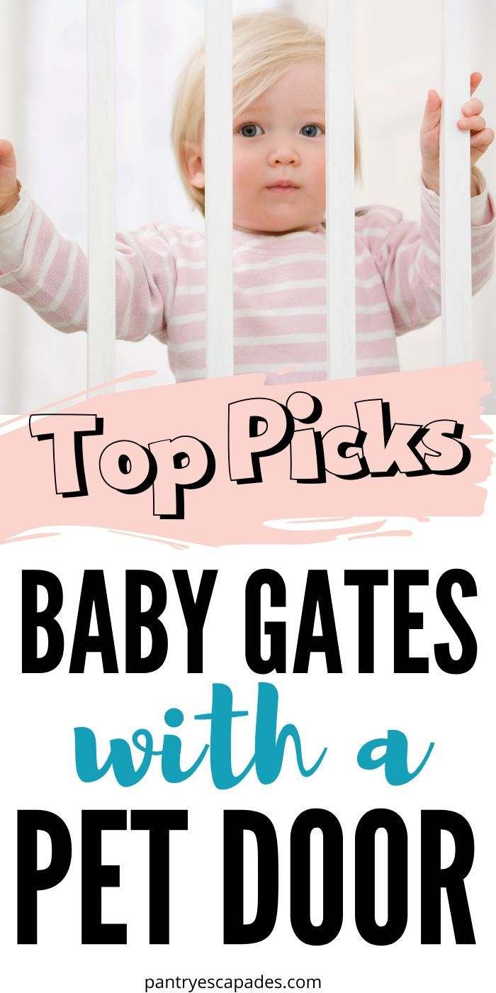 Find the best baby gate with a pet door for your home!