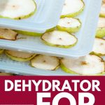 Best Food Dehydrator for Fruit | Best Dehydrator Countertop Unit | What's the Best Dehydrator for Fruit | What's the Best Way to Dehydrate Fruit | Dehydrating Sliced Fruit | The Best Tray Dehydrator | #dehydrator #kitchenappliance #fooddehydrator #rawfood #diet