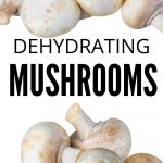 what's the Best Dehydrator for Mushrooms | How to Dehydrate Mushrooms | Should you Dehydrate Mushrooms? | What's the Best Way to Dehydrate a Mushroom? | #mushrooms #dehydrating #kitchenaccessories #appliances #cooking #rawfood