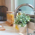 Best Garbage Disposal | Garbage Disposal Reviews | InSinkErator Reviews | Best InSinkErator | How Does a Garbage Disposal Work? | Garbage Disposal Installation | #garbagedisposal #kitchenreviews #reviews #accessories